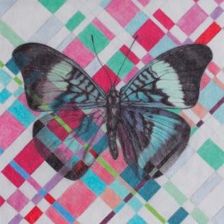 Woven_butterfly_1