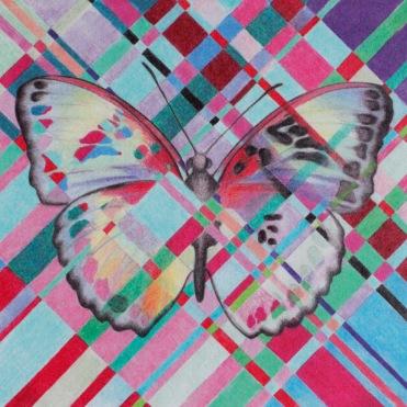 Woven_butterfly_2