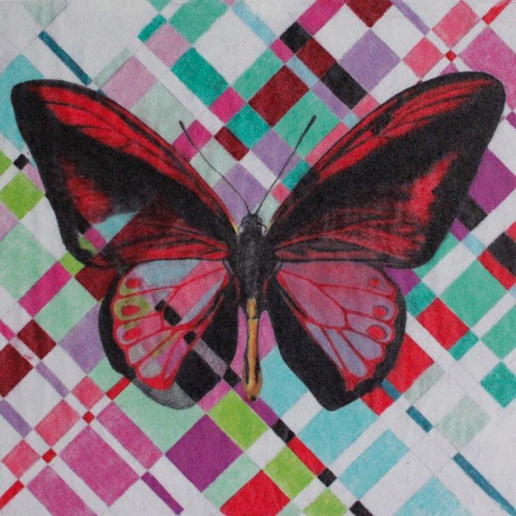 Woven_butterfly_3